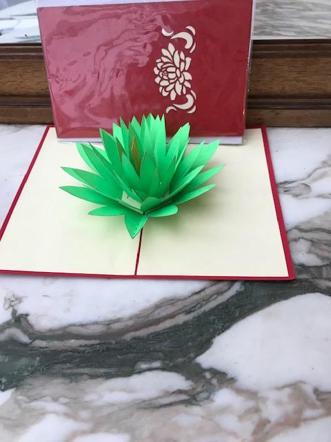 Lotus 2€ moyenne 4€ grande (Ref : C_04N)