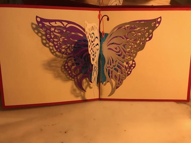 Papillon 2€ moyenne, 4€ grande (Ref : C_01M)